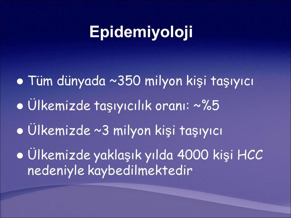 52 hafta Tedavi Sonu 26 hafta İzlem Sonu 0 1010 2020 3030 40 Peg-IFN + LAMPeg-IFN % 7 %10 %33 %9 P<0.0001 P=0.43 HBV DNA < 400 kopya/ml Janssen HL et al.