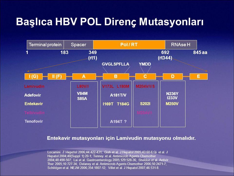 Başlıca HBV POL Diren ç Mutasyonları I (G)II (F)ABCDE Terminal proteinSpacerPol / RTRNAse H 1183349692845 aa (rt1)(rt344) GVGLSPFLLAYMDD V173LL180MM204V/I/S A181T/V N236Y I233V I169T T184G S202I M250V M204V/I A194T .