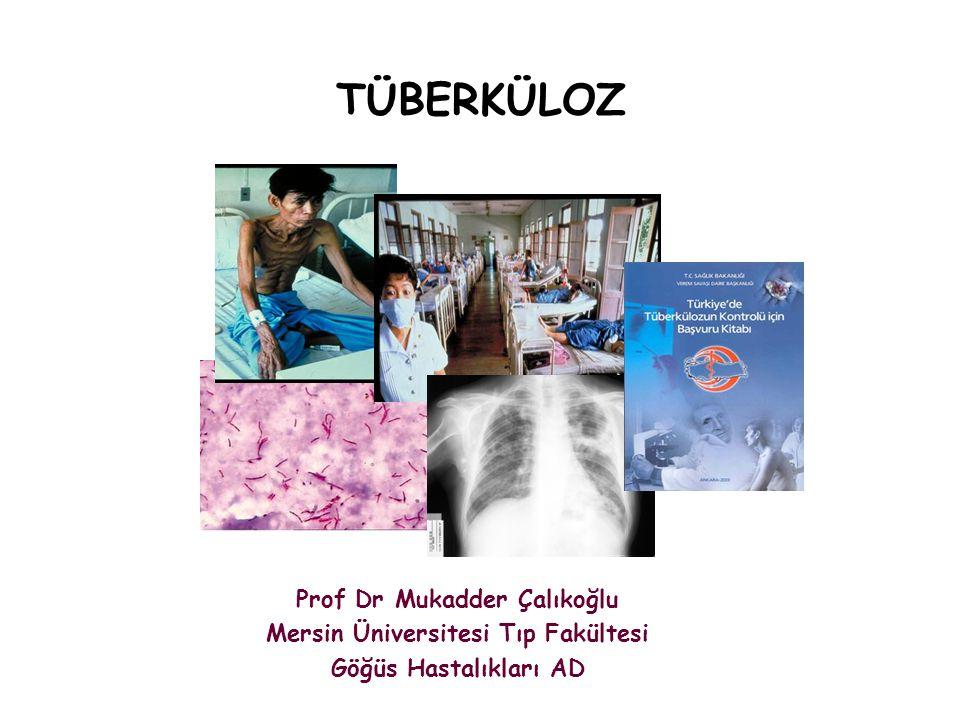 TÜBERKÜLOZ Prof Dr Mukadder Çalıkoğlu Mersin Üniversitesi Tıp Fakültesi Göğüs Hastalıkları AD