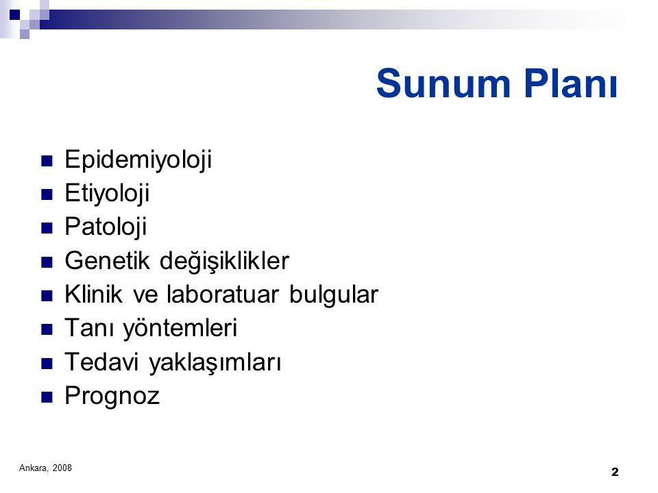 2 Sunum Planı Epidemiyoloji Etiyoloji Patoloji Genetik değişiklikler Klinik ve laboratuar bulgular Tanı yöntemleri Tedavi yaklaşımları Prognoz Ankara, 2008