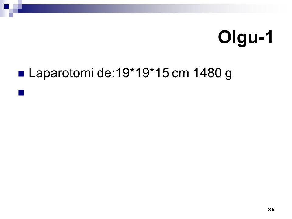 35 Laparotomi de:19*19*15 cm 1480 g Olgu-1