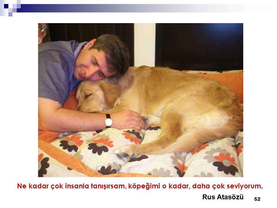 52 Ne kadar çok insanla tanışırsam, köpeğimi o kadar, daha çok seviyorum. Rus Atasözü