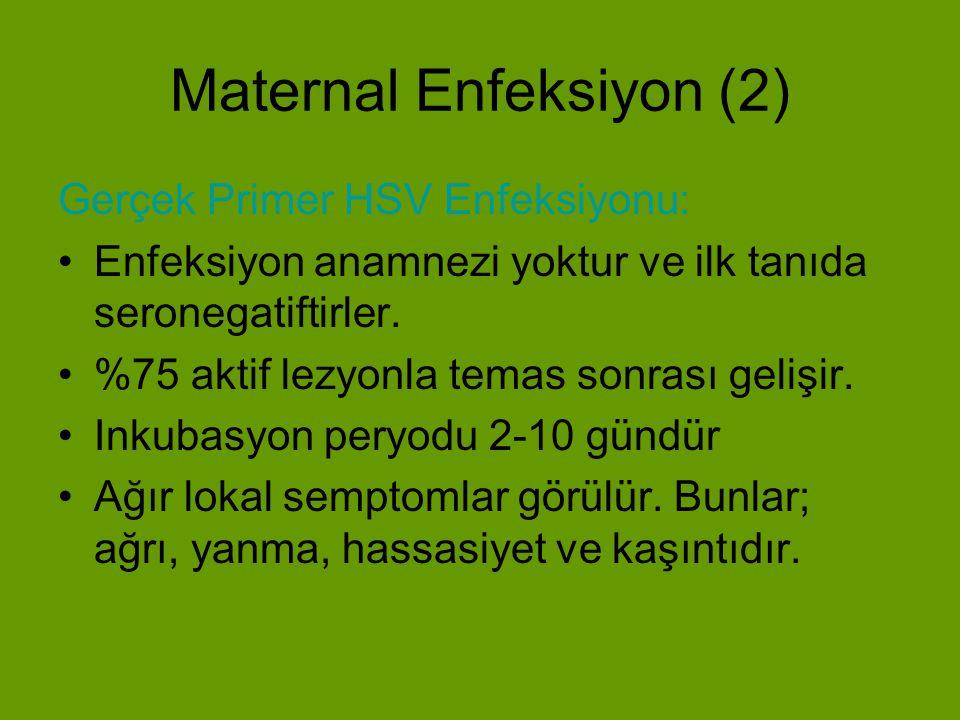 Maternal Enfeksiyon (3) Herpetik lezyonlar eritamatöz lekeler şeklinde başlar, papül, vezikül ve ülser şeklinde ilerler.