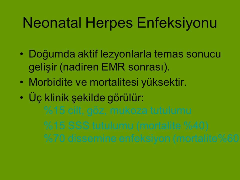 Konjenital Herpes Enfeksiyonu Çoğu vakalar primer enfeksiyondan sonra gelişir.