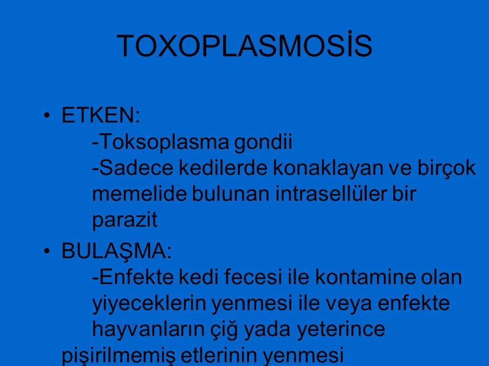 TOXOPLASMOSİS ETKEN: -Toksoplasma gondii -Sadece kedilerde konaklayan ve birçok memelide bulunan intrasellüler bir parazit BULAŞMA: -Enfekte kedi fece