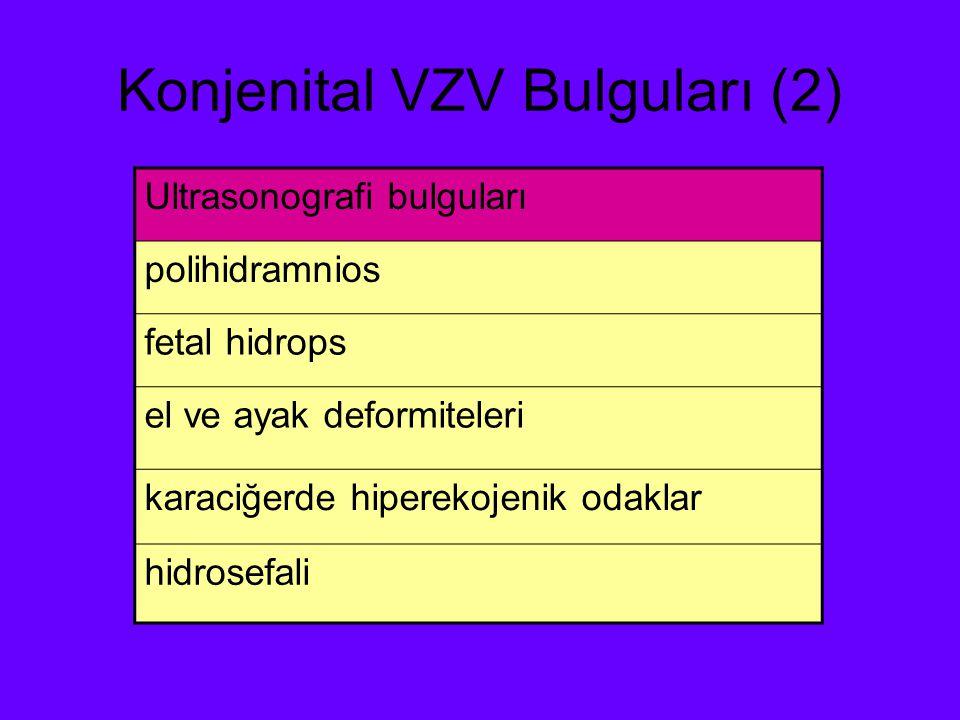 Konjenital VZV Bulguları (2) Ultrasonografi bulguları polihidramnios fetal hidrops el ve ayak deformiteleri karaciğerde hiperekojenik odaklar hidrosef