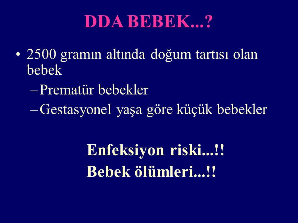 DDA BEBEK....