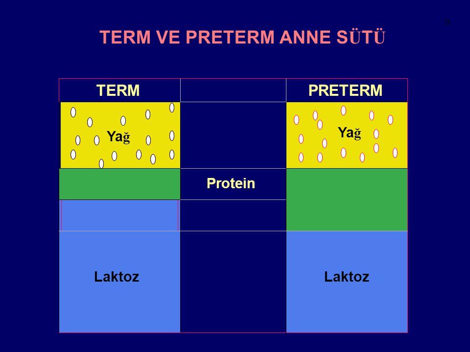 Laktoz Laktoz TERM VE PRETERM ANNE S Ü T Ü TERMPRETERM Protein Ya ğ 39