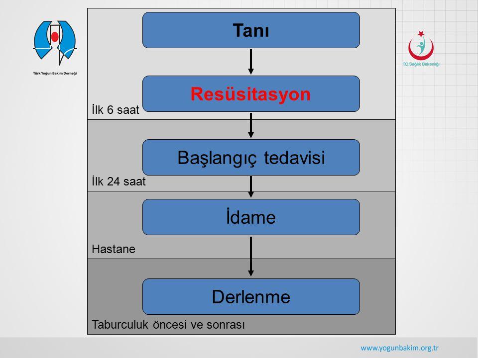 Taburculuk öncesi ve sonrası Hastane İlk 24 saat İlk 6 saat Tanı Resüsitasyon Başlangıç tedavisi İdame Derlenme