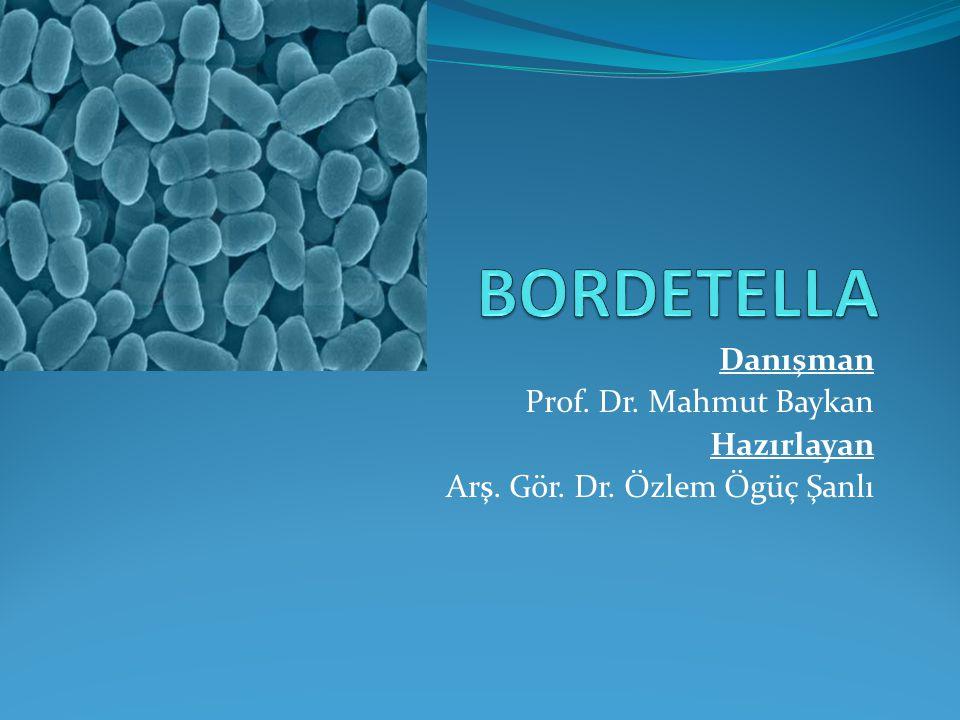 Danışman Prof. Dr. Mahmut Baykan Hazırlayan Arş. Gör. Dr. Özlem Ögüç Şanlı