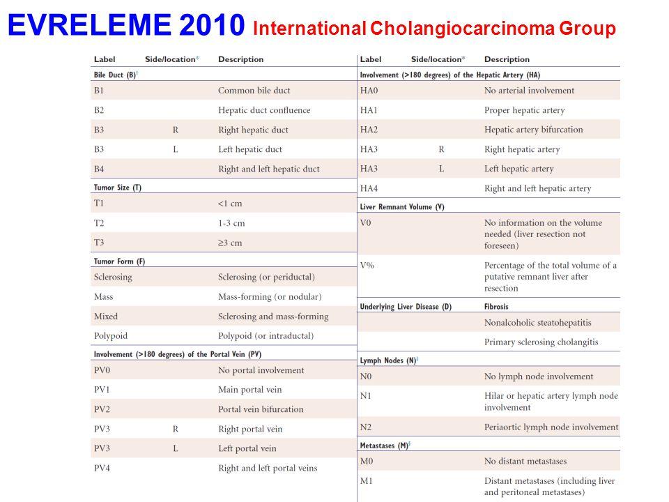 EVRELEME 2010 International Cholangiocarcinoma Group