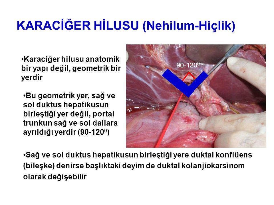Parikh AA et al, HPB 2005