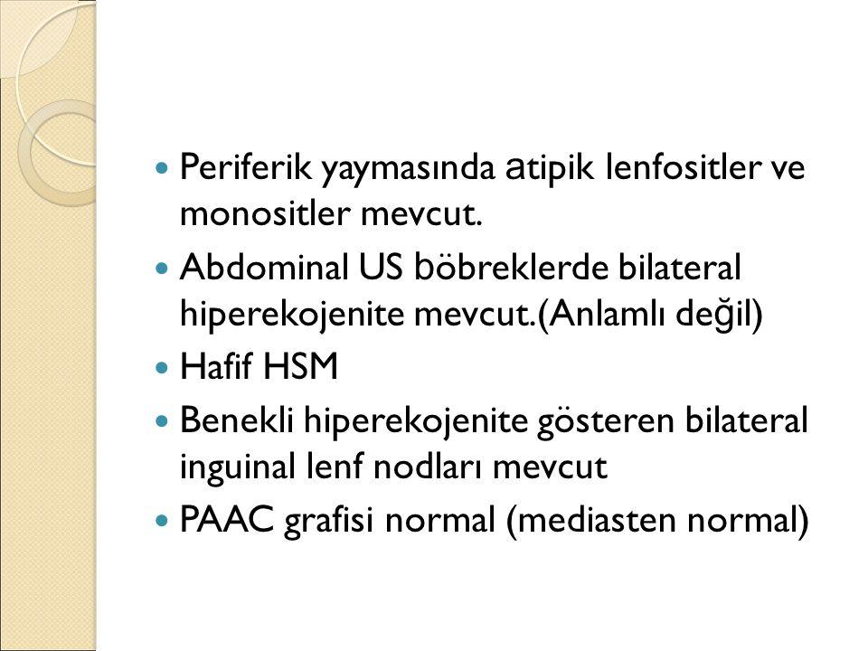Periferik yaymasında a tipik lenfositler ve monositler mevcut.