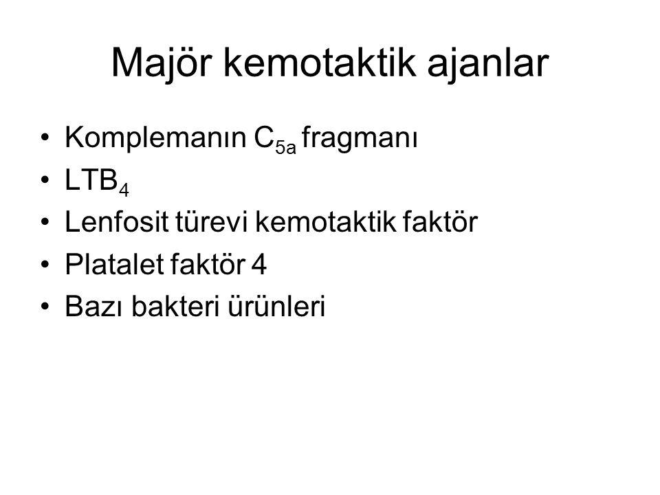Majör kemotaktik ajanlar Komplemanın C 5a fragmanı LTB 4 Lenfosit türevi kemotaktik faktör Platalet faktör 4 Bazı bakteri ürünleri