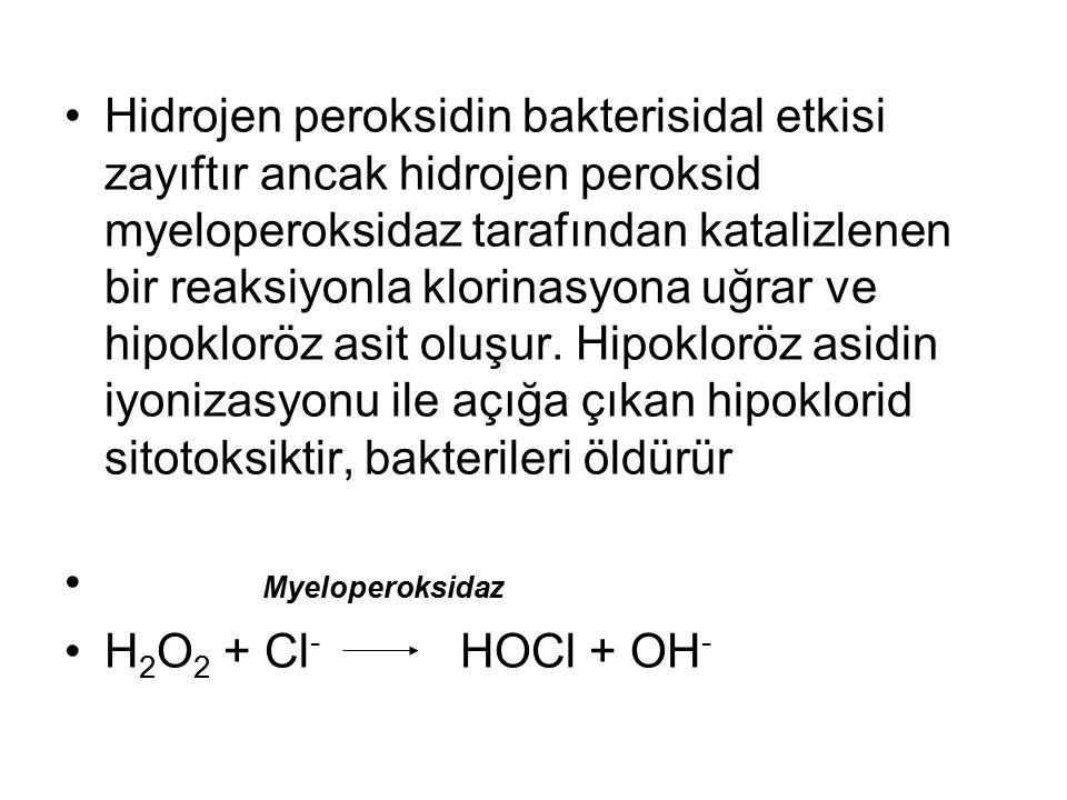 Hidrojen peroksidin bakterisidal etkisi zayıftır ancak hidrojen peroksid myeloperoksidaz tarafından katalizlenen bir reaksiyonla klorinasyona uğrar ve hipokloröz asit oluşur.