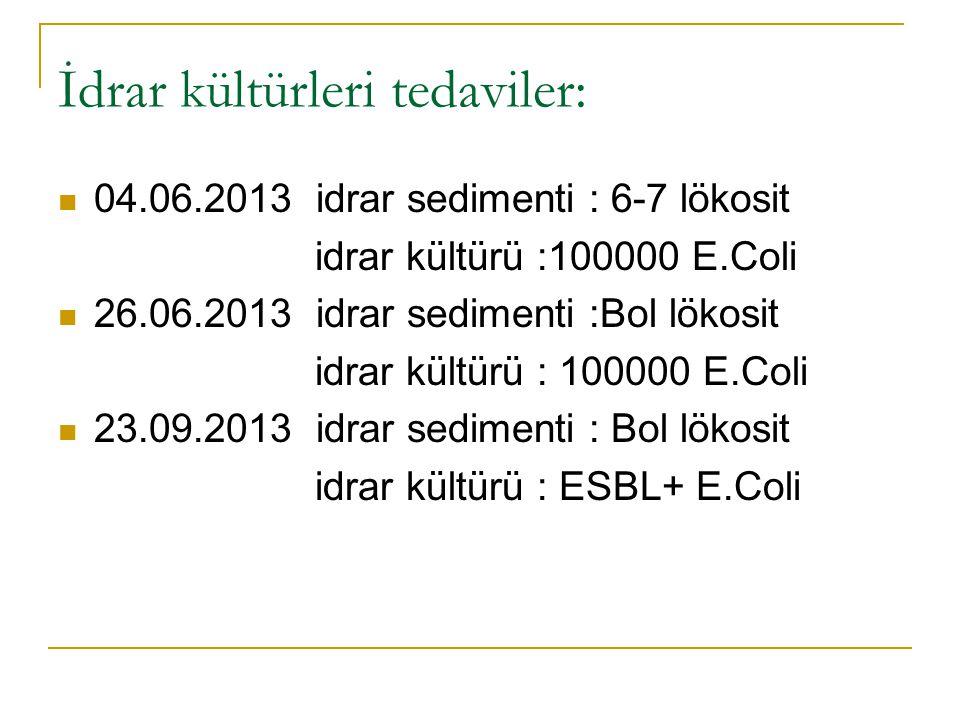 İdrar kültürleri tedaviler: 04.06.2013 idrar sedimenti : 6-7 lökosit idrar kültürü :100000 E.Coli 26.06.2013 idrar sedimenti :Bol lökosit idrar kültür