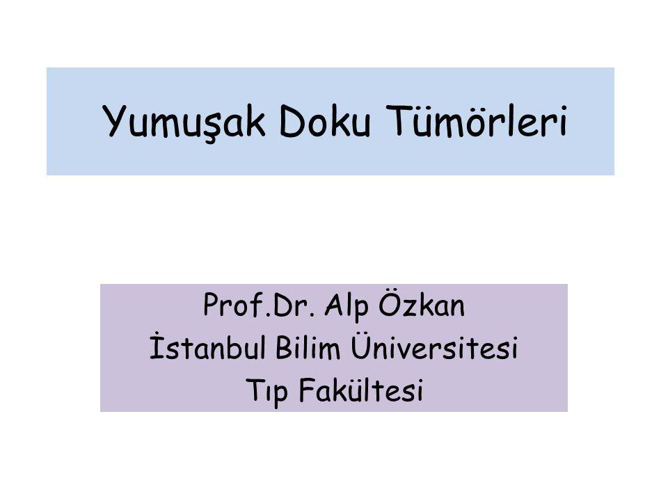 Yumuşak Doku Tümörleri Prof.Dr. Alp Özkan İstanbul Bilim Üniversitesi Tıp Fakültesi