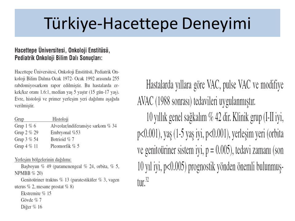 Türkiye-Hacettepe Deneyimi