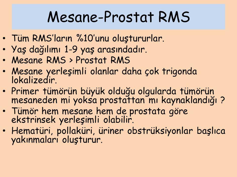 Mesane-Prostat RMS Tanı BT ( Lezyon ve akciğer) MR Endoskopik inceleme Genel anestezi altında bimanuel pelvik araştırma Biopsi Kemik sintigrafisi Kemik İliği