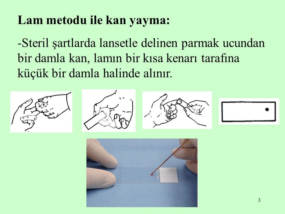 3 Lam metodu ile kan yayma: -Steril şartlarda lansetle delinen parmak ucundan bir damla kan, lamın bir kısa kenarı tarafına küçük bir damla halinde al