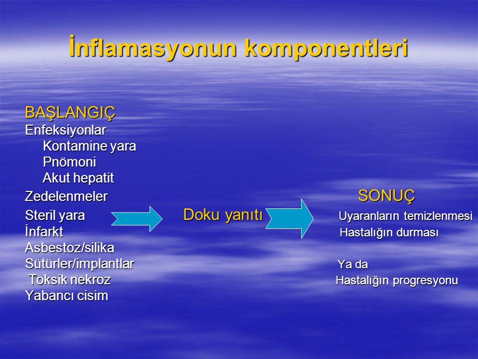 İnflamasyonun komponentleri BAŞLANGIÇEnfeksiyonlar Kontamine yara Pnömoni Akut hepatit Zedelenmeler SONUÇ Steril yara Doku yanıtı Uyaranların temizlen