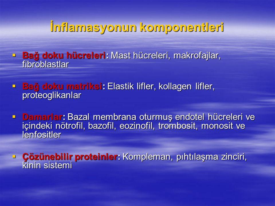 İnflamasyonun komponentleri  Bağ doku hücreleri: Mast hücreleri, makrofajlar, fibroblastlar  Bağ doku matriksi: Elastik lifler, kollagen lifler, pro