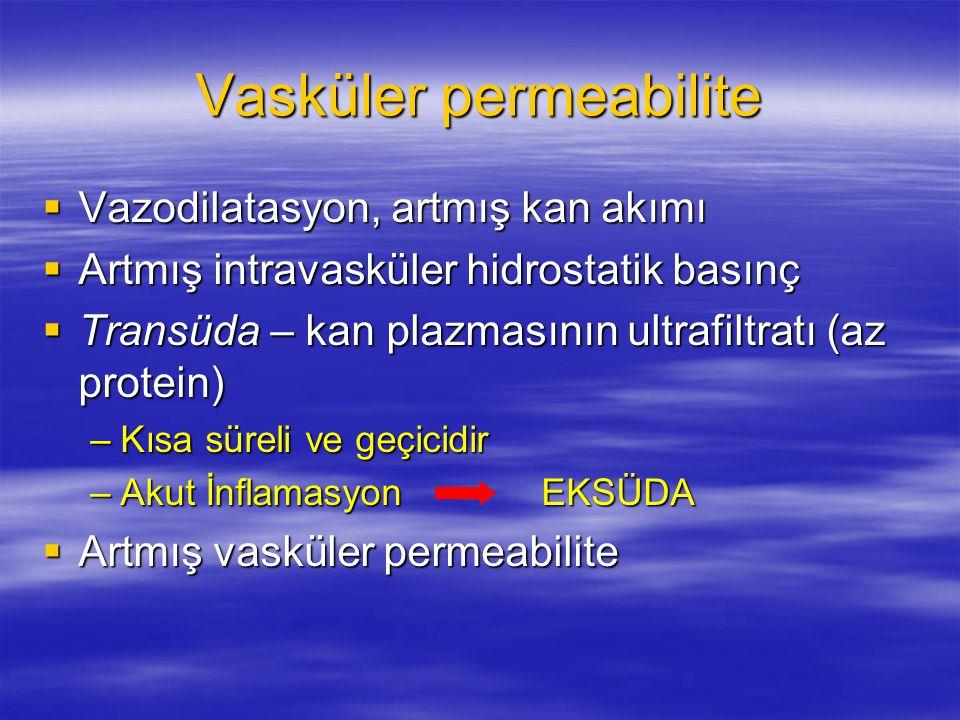 Vasküler permeabilite  Vazodilatasyon, artmış kan akımı  Artmış intravasküler hidrostatik basınç  Transüda – kan plazmasının ultrafiltratı (az prot