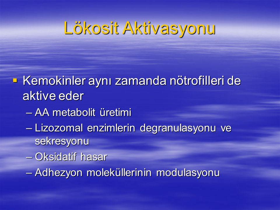 Lökosit Aktivasyonu  Kemokinler aynı zamanda nötrofilleri de aktive eder –AA metabolit üretimi –Lizozomal enzimlerin degranulasyonu ve sekresyonu –Ok