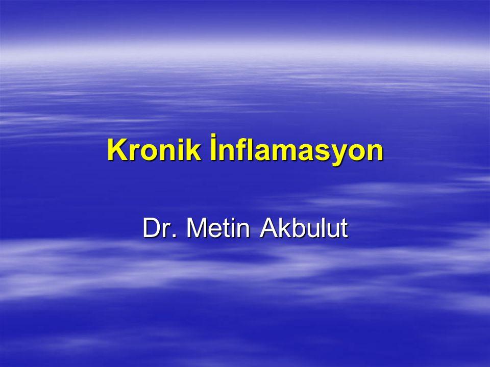 Kronik İnflamasyon Dr. Metin Akbulut