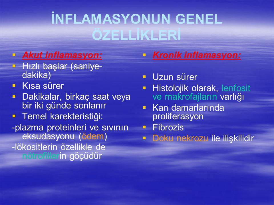 İNFLAMASYONUN GENEL ÖZELLİKLERİ   Akut inflamasyon:   Hızlı başlar (saniye- dakika)   Kısa sürer   Dakikalar, birkaç saat veya bir iki günde s