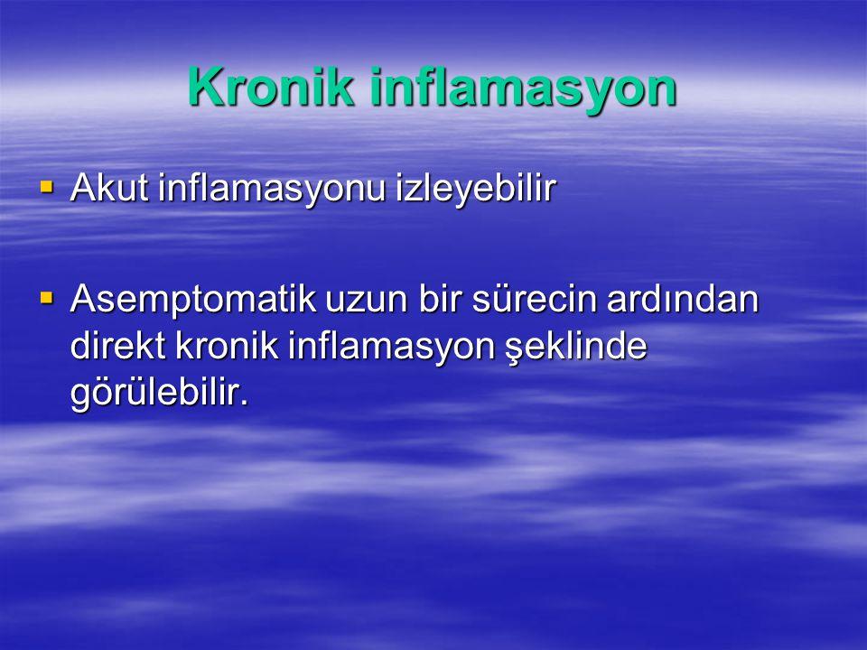 Kronik inflamasyon  Akut inflamasyonu izleyebilir  Asemptomatik uzun bir sürecin ardından direkt kronik inflamasyon şeklinde görülebilir.