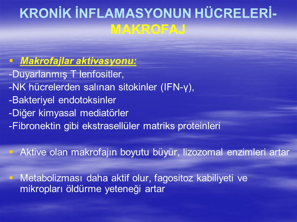 KRONİK İNFLAMASYONUN HÜCRELERİ- MAKROFAJ   Makrofajlar aktivasyonu: -Duyarlanmış T lenfositler, -NK hücrelerden salınan sitokinler (IFN-γ), -Bakteri