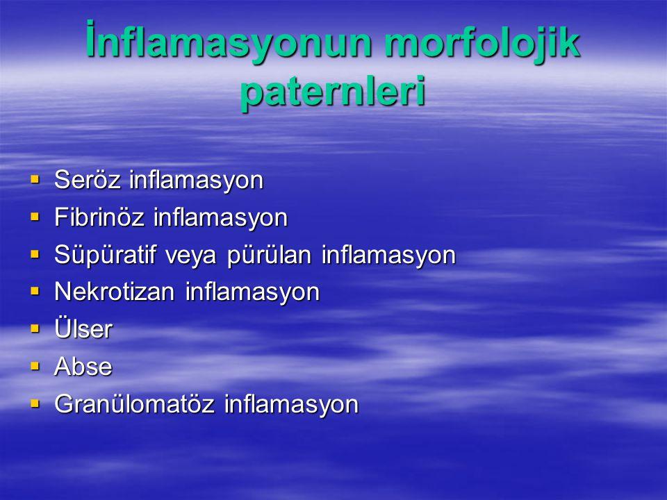 İnflamasyonun morfolojik paternleri  Seröz inflamasyon  Fibrinöz inflamasyon  Süpüratif veya pürülan inflamasyon  Nekrotizan inflamasyon  Ülser 