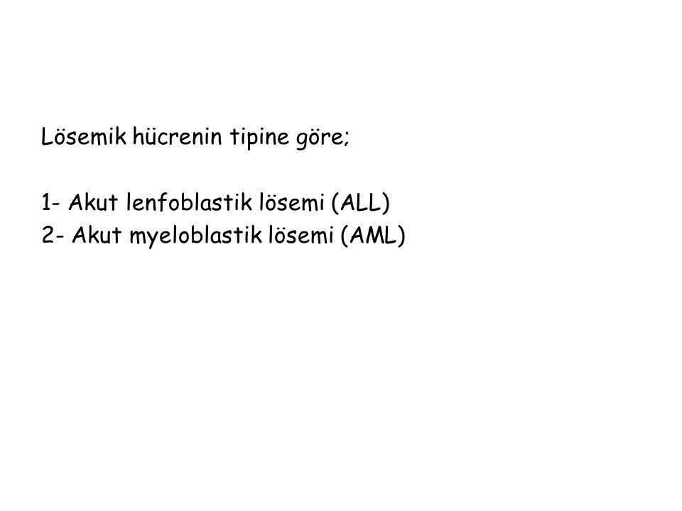 Lösemik hücrenin tipine göre; 1- Akut lenfoblastik lösemi (ALL) 2- Akut myeloblastik lösemi (AML)