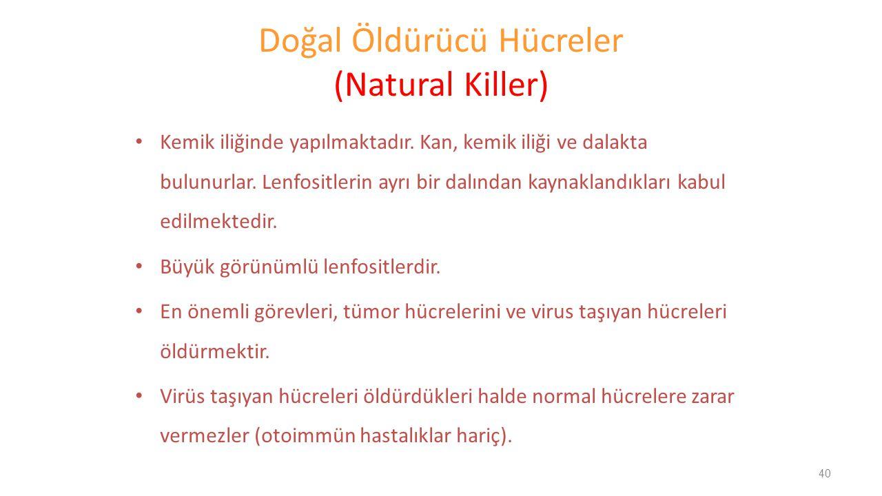 Doğal Öldürücü Hücreler (Natural Killer) Kemik iliğinde yapılmaktadır. Kan, kemik iliği ve dalakta bulunurlar. Lenfositlerin ayrı bir dalından kaynakl