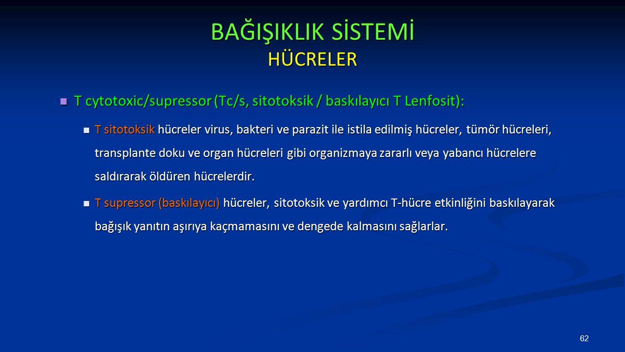 BAĞIŞIKLIK SİSTEMİ HÜCRELER T cytotoxic/supressor (Tc/s, sitotoksik / baskılayıcı T Lenfosit): T cytotoxic/supressor (Tc/s, sitotoksik / baskılayıcı T