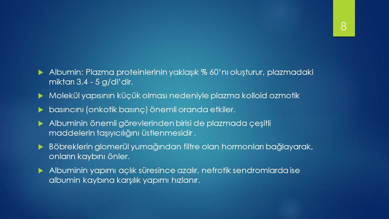  Globulin: Plazma proteinlerinin % 35'i globulinlerdir.