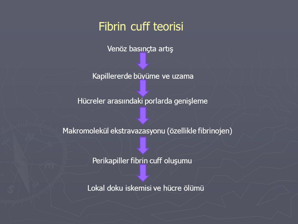 Fibrin cuff teorisi Venöz basınçta artış Kapillererde büyüme ve uzama Hücreler arasıındaki porlarda genişleme Makromolekül ekstravazasyonu (özellikle fibrinojen) Perikapiller fibrin cuff oluşumu Lokal doku iskemisi ve hücre ölümü