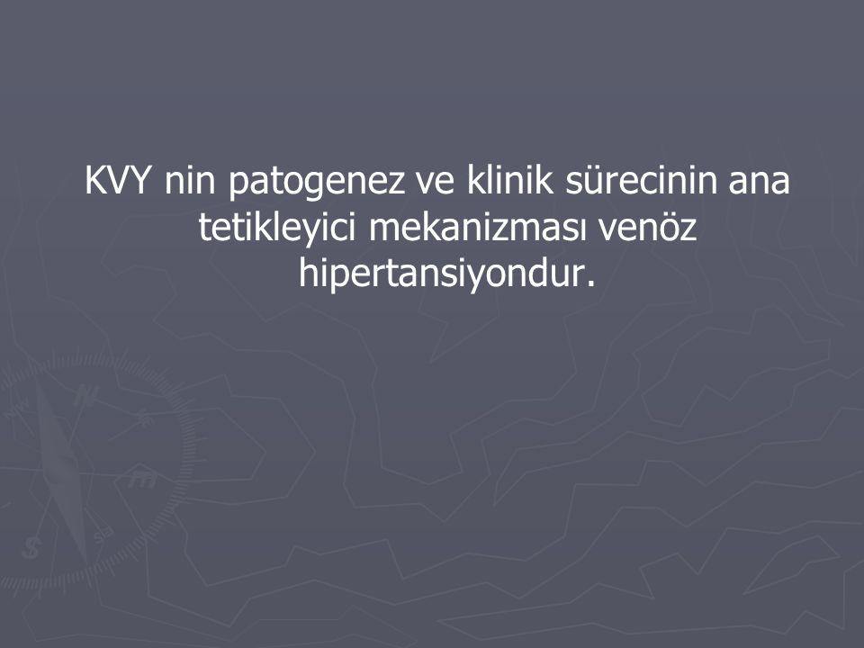 KVY nin patogenez ve klinik sürecinin ana tetikleyici mekanizması venöz hipertansiyondur.