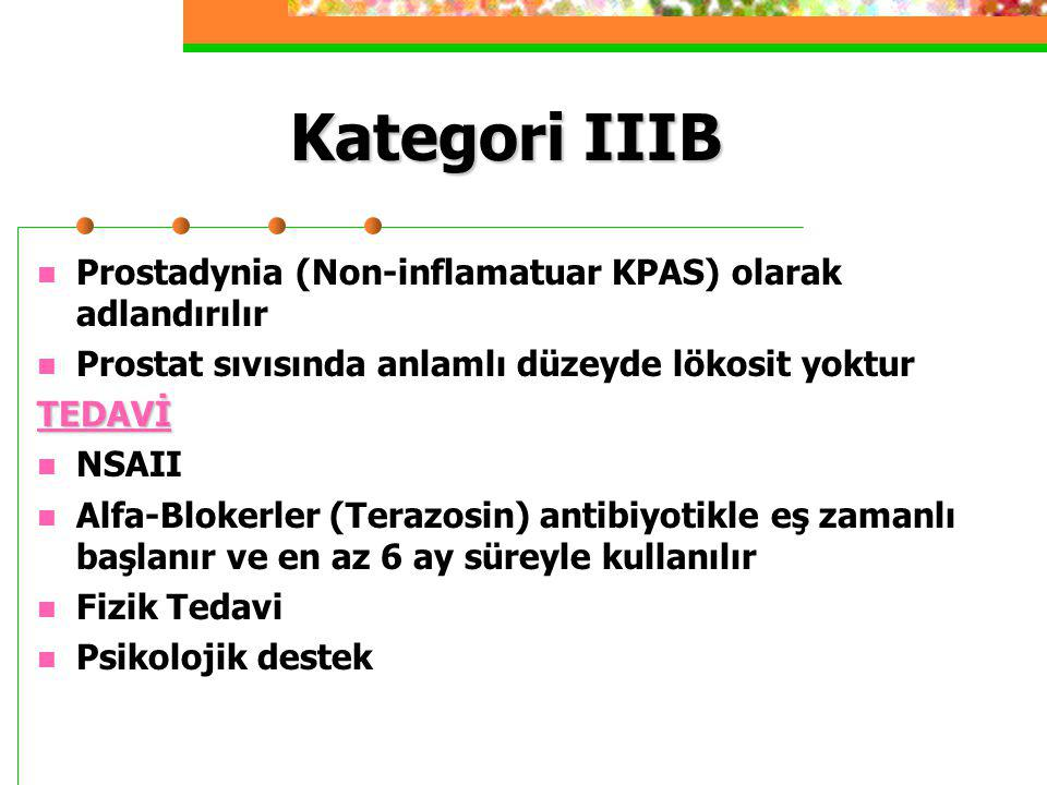 Kategori IIIB Prostadynia (Non-inflamatuar KPAS) olarak adlandırılır Prostat sıvısında anlamlı düzeyde lökosit yokturTEDAVİ NSAII Alfa-Blokerler (Tera