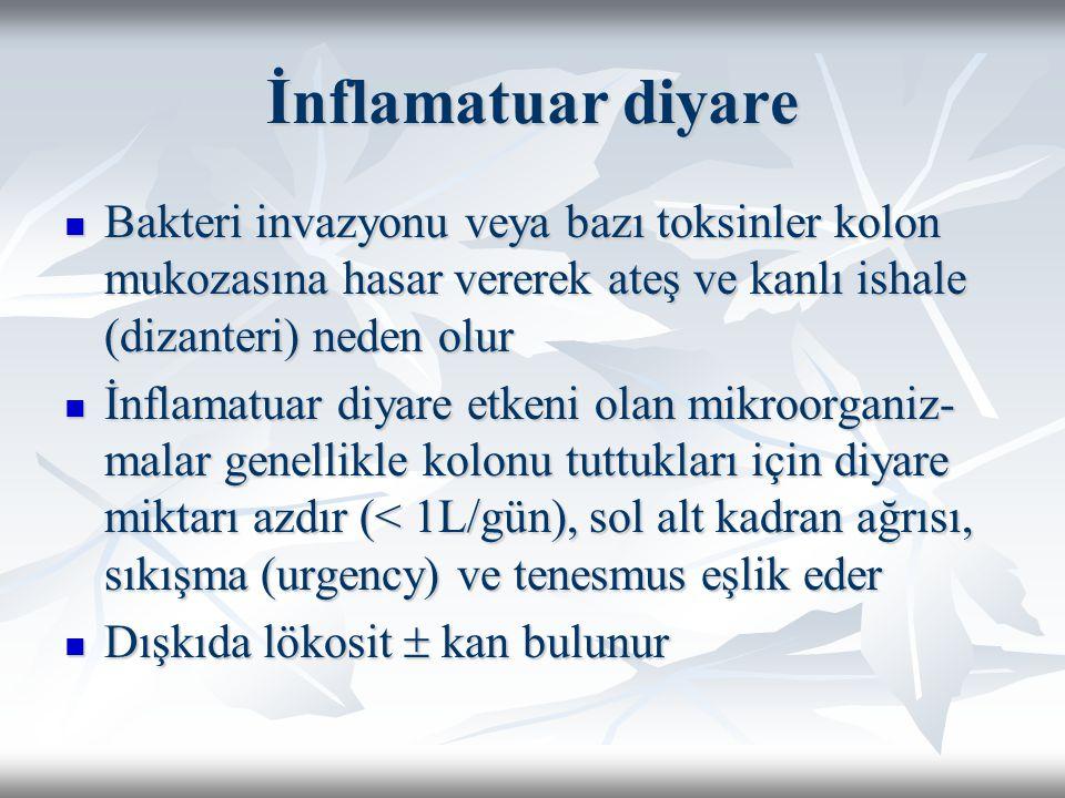 İnflamatuar diyare Bakteri invazyonu veya bazı toksinler kolon mukozasına hasar vererek ateş ve kanlı ishale (dizanteri) neden olur Bakteri invazyonu