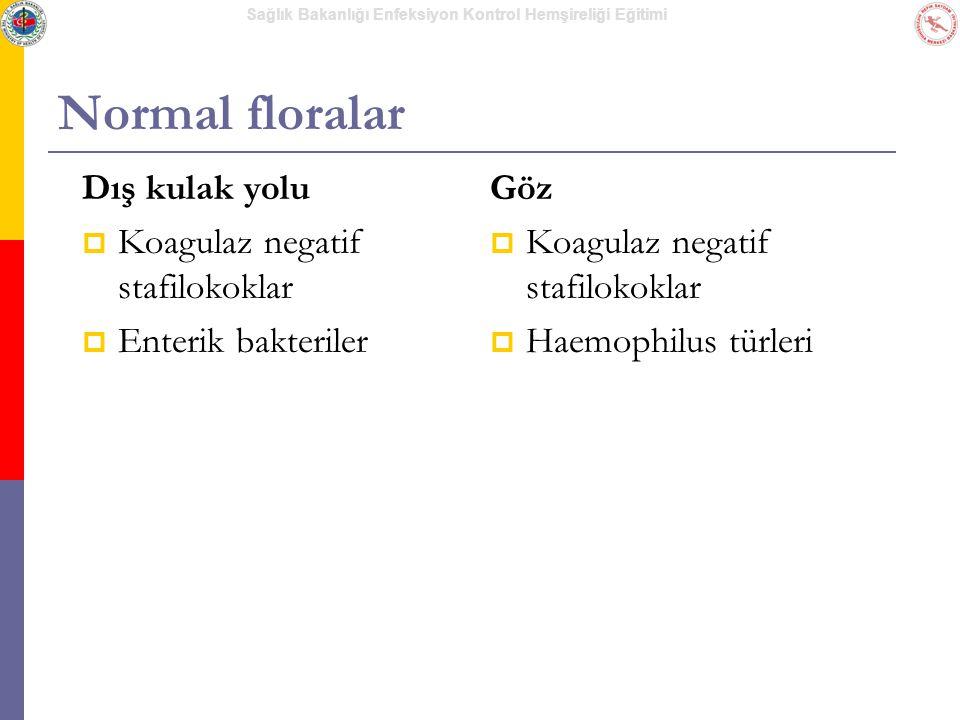 Sağlık Bakanlığı Enfeksiyon Kontrol Hemşireliği Eğitimi Normal floralar Dış kulak yolu  Koagulaz negatif stafilokoklar  Enterik bakteriler Göz  Koa