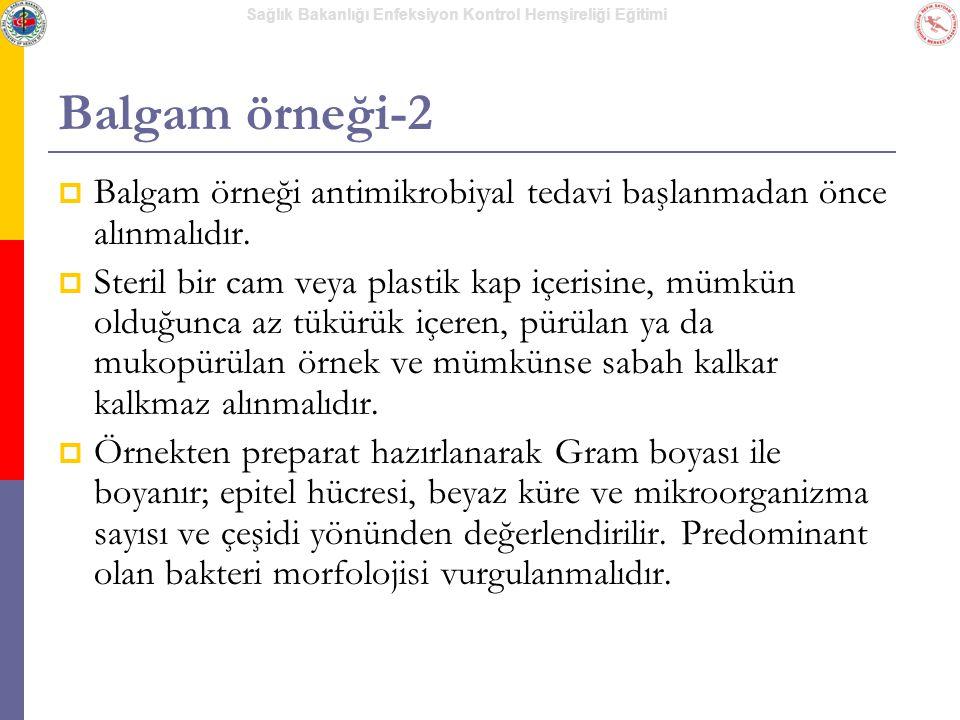 Sağlık Bakanlığı Enfeksiyon Kontrol Hemşireliği Eğitimi Balgam örneği-2  Balgam örneği antimikrobiyal tedavi başlanmadan önce alınmalıdır.  Steril b