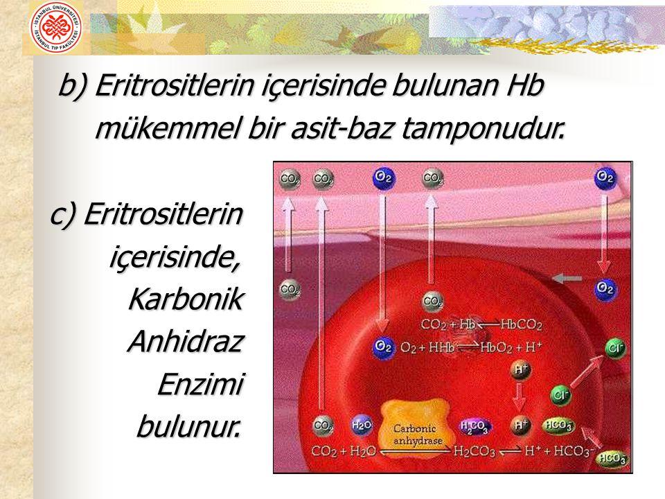 b) Eritrositlerin içerisinde bulunan Hb mükemmel bir asit-baz tamponudur.