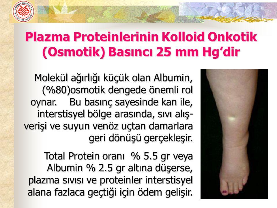 Plazma Proteinlerinin Kolloid Onkotik (Osmotik) Basıncı 25 mm Hg'dir Molekül ağırlığı küçük olan Albumin, (%80)osmotik dengede önemli rol oynar.