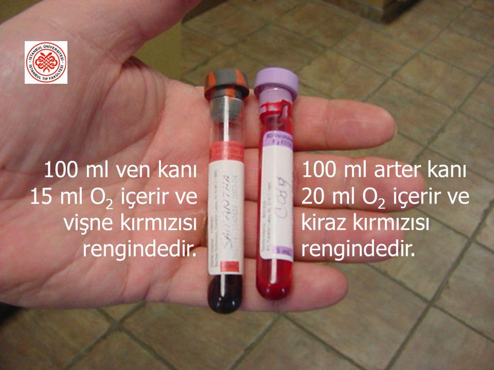 100 ml arter kanı 20 ml O 2 içerir ve kiraz kırmızısı rengindedir.