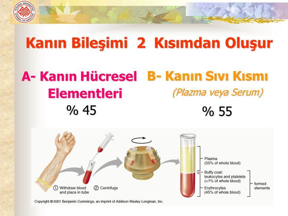 Kanın Bileşimi 2 Kısımdan Oluşur A- Kanın Hücresel Elementleri Elementleri % 45 B- Kanın Sıvı Kısmı (Plazma veya Serum) (Plazma veya Serum) % 55