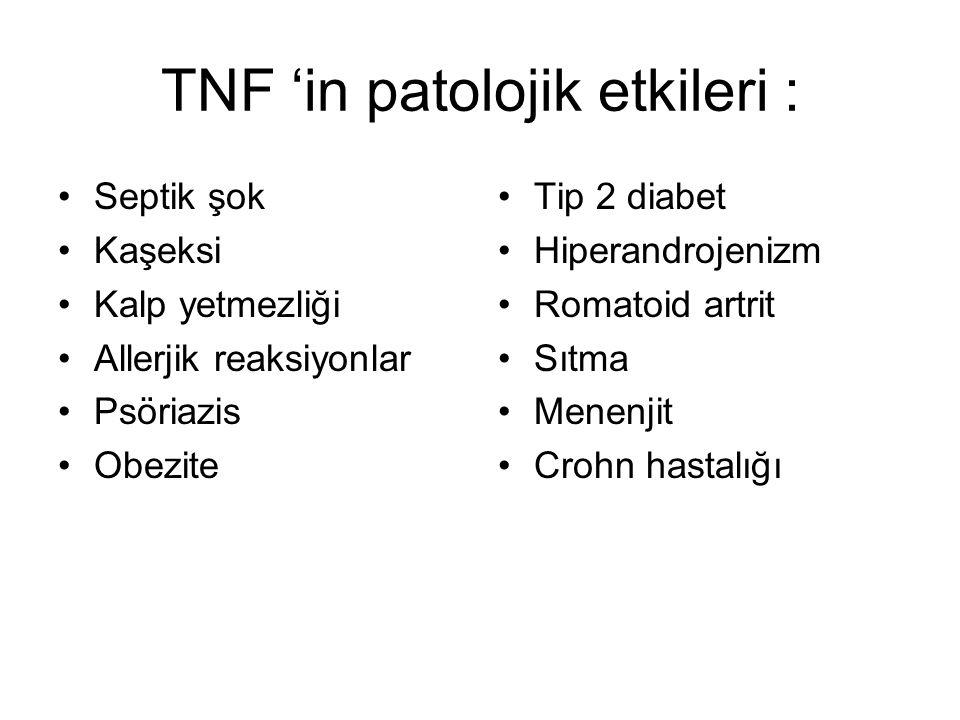TNF 'in patolojik etkileri : Septik şok Kaşeksi Kalp yetmezliği Allerjik reaksiyonlar Psöriazis Obezite Tip 2 diabet Hiperandrojenizm Romatoid artrit