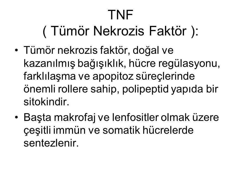TNF ( Tümör Nekrozis Faktör ): Tümör nekrozis faktör, doğal ve kazanılmış bağışıklık, hücre regülasyonu, farklılaşma ve apopitoz süreçlerinde önemli r