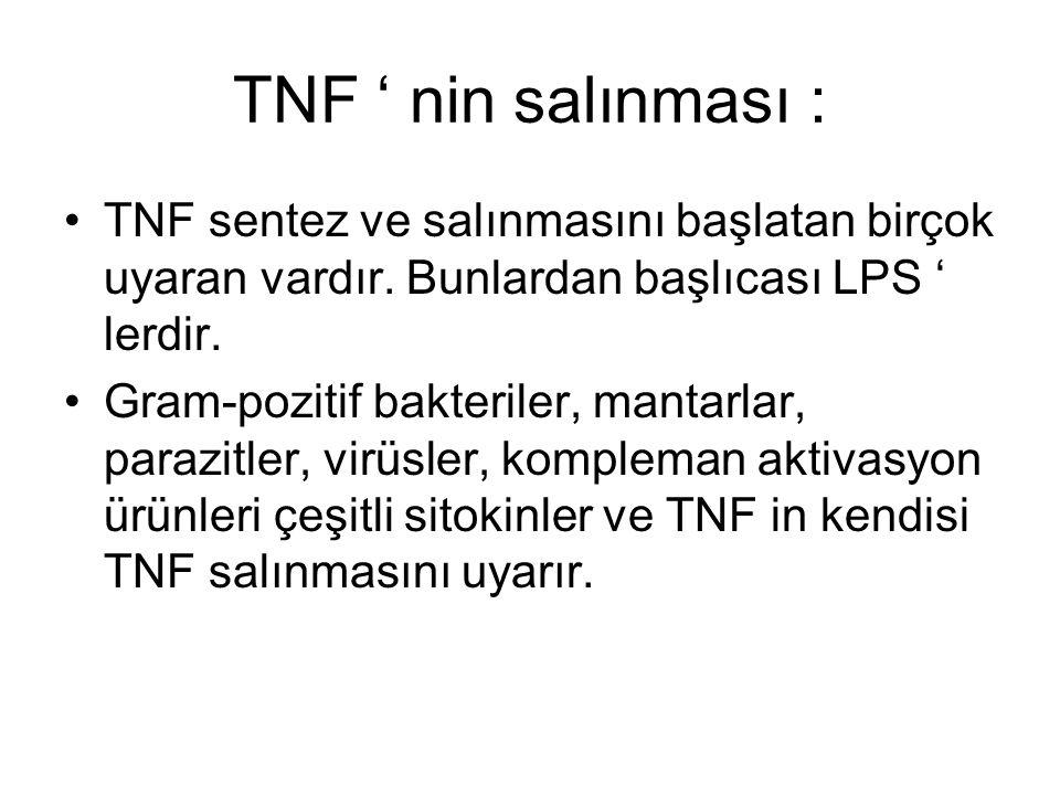 TNF ' nin salınması : TNF sentez ve salınmasını başlatan birçok uyaran vardır. Bunlardan başlıcası LPS ' lerdir. Gram-pozitif bakteriler, mantarlar, p